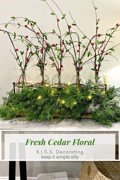 If you want a super easy Christmas arrangement or centerpiece, try this fresh cedar idea. Get even more holiday inspiration and home decor ideas at Trendy Tree.