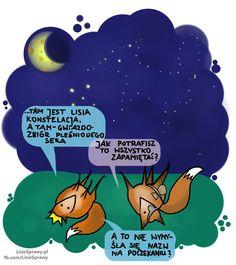 Gwiazdozbiór lisa