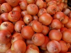 Wonderful Health Benefits of Onions. They are a low caloric food and rich infiber, antioxidants,potassium, iron, sulfur, calcium and health benefits.