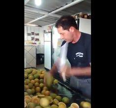¡Un hombre posee una formidable habilidad para cortar frutas como en el juego Fruit Ninja! #fruta #cortar #ninja http://www.pandabuzz.com/es/video-del-dia/hombre-corta-limones-ninja