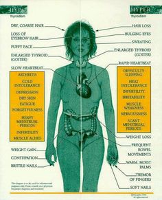 Know your thyroid - great diagram