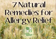 7 Natural Remedies for Allergy Relief ~ I have got to take the time to time these remedies! Maybe too late to be effective for this Spring....IDK?