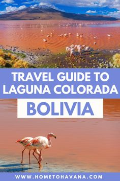 Bolivia Salt Flats, Bolivia Travel, Beautiful Sites, South America Travel, Ultimate Travel, Photo Location, Day Tours, Plan Your Trip, Day Trip