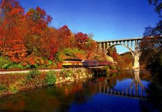 Need a relaxing and beautiful daytime activity?  Why not explore the Cuyahoga Valley National park and scenic railroad?  All aboard!