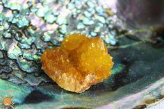 Small Citrine Golden Sunshine Spirit Cactus Quartz Crystal Cluster