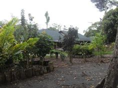 Hosteria in jungle