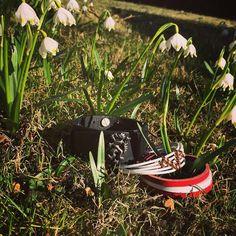Spring is coming to Austria #frühling #endlich #cowstyle #forher #forhim #leder #Graz #sonne #armbänder #wunderschön #sunshine #spring #freudepur