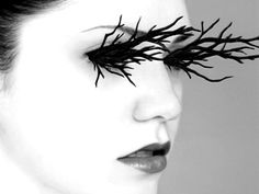 From diamond-encrusted eyelashes to eyelashes made out of tree branches, we've searched high and low to find the most extreme false eyelashes