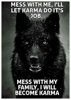 Mess with me and I will let karma do it's job. Mess with my family and I become karma. (ALK: 'family' can be anyone I vaguely care about whom I feel is currently defenceless against someone cruel! Motivational Quotes, Funny Quotes, Inspirational Quotes, Humor Quotes, Funny Humor, Karma Quotes, Great Quotes, Quotes To Live By, Love My Family Quotes