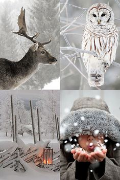 winter inspiration by the style files, via Flickr