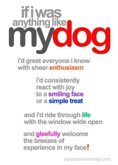 Be like dogs.  :-)
