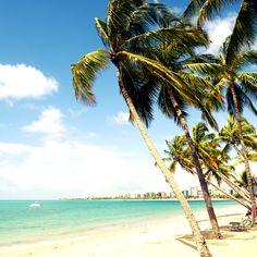 Los viajeros visitan Maceió por sus increíbles playas, consideradas entre las…