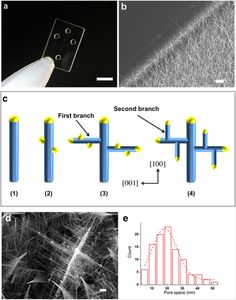 Three-dimensional Nanowire Structures for Ultra-Fast Separation of DNA, Protein and RNA