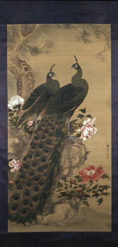 Peacock and hen, pine, rocks and peonies. Painted by: So Shiko (宋紫岡), Edo Period