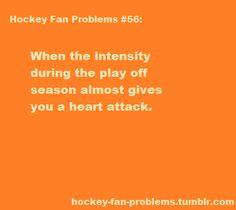 Hockey fan problems