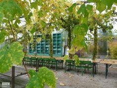 Kwekerij en theedrinkerij- greenhouse with tea salon www.noordwijkbuiten.nl