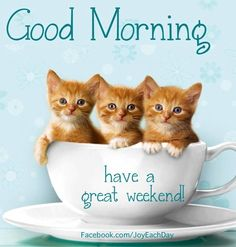 Good morning and have a great weekend quote via www.Facebook.com/JoyEachDay