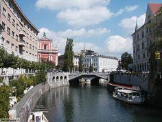 Slovenia   Slovenia, tutto secondo le attese