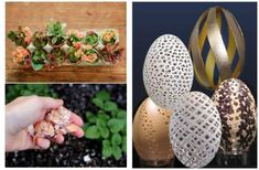 20 Unusual Uses For Eggs, Egg Shells, and Egg Cartons