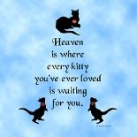 Heaven is where every kitty you've ever loved is waiting for you....