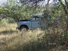 Series2a Land Rover in Songimvelo Game Reserve, South Africa.