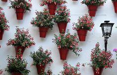 Cada primavera en el mes de mayo los patios de Cordoba abren sus puertas y nos invitan a entrar.
