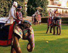 Elephant Polo + Taj Rambagh Palace