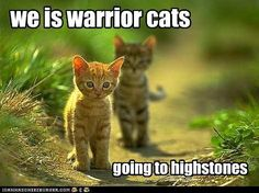 This reminds me of Firestar when he was an apprentice going to highstones with Tigerstar and Bluestar!