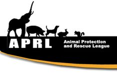 Director of Special Projects at APRL.  My accomplishments include recruiting volunteers and writing grants for funding of projects to help animals.