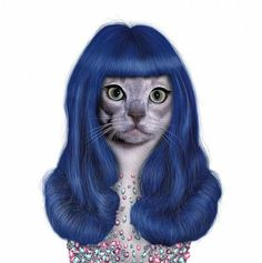kitty purry........Hamamamahahmamam. Don't tell me this didn't make you laugh. Don't lie.... just don't do it.