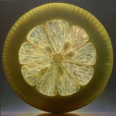 art, cool, awesome, paintings, hyper realistic, amazing, 10 Hyper Realistic Illuminated Fruit Slices Paintings
