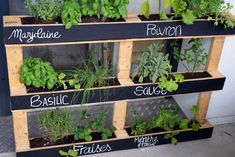 15 Beautiful Do-It-Yourself Pallet Gardens That You're Sure To Love Vertical Pallet Garden, Herb Garden Pallet, Pallets Garden, Vegetable Garden, Balcony Plants, Balcony Garden, Pallet Painting, Garden Boxes, Garden Ideas