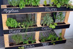 15 Beautiful Do-It-Yourself Pallet Gardens That You're Sure To Love Vertical Pallet Garden, Herb Garden Pallet, Vegetable Garden, Balcony Plants, Balcony Garden, Potager Palettes, Palette Garden, Pallet Painting, Garden Boxes