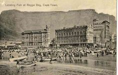 Landing Fish at Rogge Bay - Hilton T Old Pictures, Old Photos, Cities In Africa, Colonial Architecture, Most Beautiful Cities, Vintage Postcards, Vintage Photos, Historical Pictures, African History