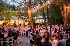 marin art and gardens wedding reception
