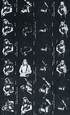 David Gilmour Animals tour