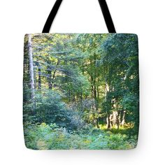 Woods at Timberholm Inn Tote Bag @FineArtAmerica - Image by Felipe Adan Lerma http://fineartamerica.com/products/woods-at-timberholm-inn-felipe-adan-lerma-tote-bag.html #accessories #handbags #forests