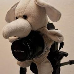 DIY camera buddy to make lil ones smile or look. Scrunchie + stuffed animal