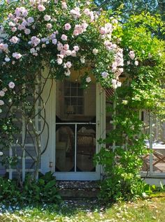 10 Ideas to Steal from English Cottage Gardens - Gardenista - - English cottage gardens are a charming (and practical) jumble of flowers, herbs, and fruit trees. See 10 design ideas to create an English cottage garden, from the editors of Gardenista. New Dawn Climbing Rose, Climbing Roses, Climbing Wall, Cottage Patio, Cottage Door, Cottage Garden Plants, Garden Living, Seaside Garden, Flowering Vines