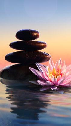 Spiritual Meditation, Mindfulness Meditation, Guided Meditation, Psychological Symptoms, Connected Learning, Body Therapy, Live Events, Planer, Workshop
