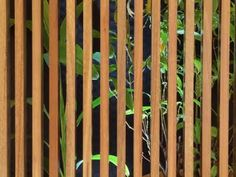 how to build a timber screen fence