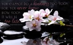 You cannot do a kindness to soon. For you never know how soon it will be too late #compassion #kindness #Emerson