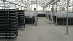 Descubre las instalaciones destinadas a la producción e I+D de las que dispone AlgaEnergy.