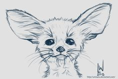 Big Eared Fox - Sketch by umisaru on deviantART