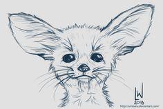 Big Eared Fox - Sketch by umisaru on deviantART