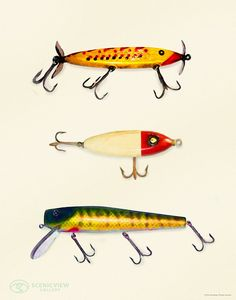 Lure Of Fishing 8 x 10 painted fishing lures by ScenicViewGallery, $45.00