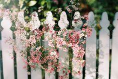 """secret–gardens: """"🌹 """""""