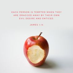 """Let no one say when he is tempted, """"I am being tempted by God,"""" for God cannot be tempted with evil, and he himself tempts no one. But each person is tempted when he is lured and enticed by his own desire. James 1:13-14"""