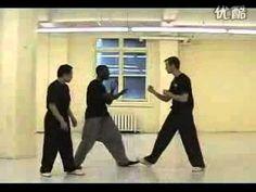 Bagua Zhang fighting