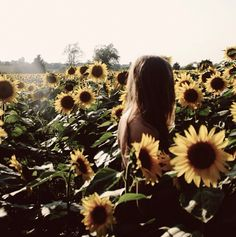 Getting lost in a sea of sunflowers this #summer, what a great way to end the day and watch the #sunset! #TOMS
